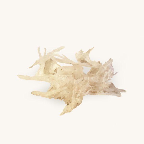 Ciala edible birds nest strips of birds nest